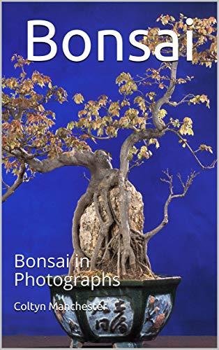 Bonsai: Bonsai in Photographs