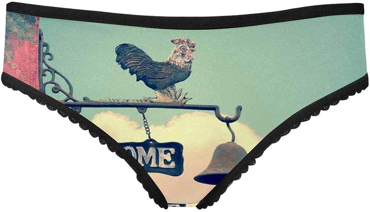 Ranking TOP18 InterestPrint Women's Soft Sale price Underwear Welcome Briefs Cat