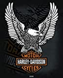 Harley Davidson - Eagle Poster Drucken (40,64 x 50,80 cm)