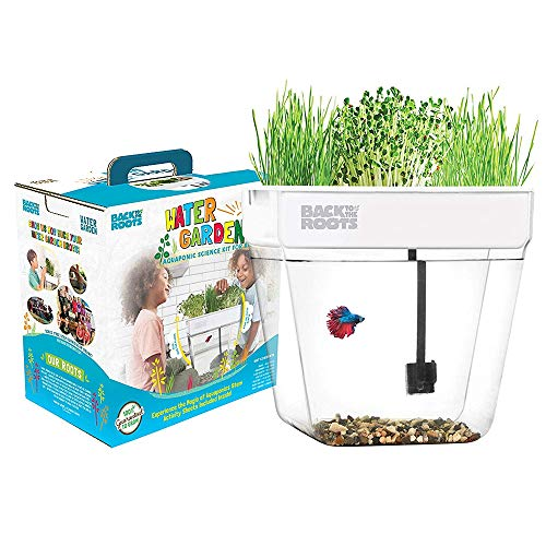 Back to the Roots Water Garden Betta Fish Aquaponics Kit Ecosystem