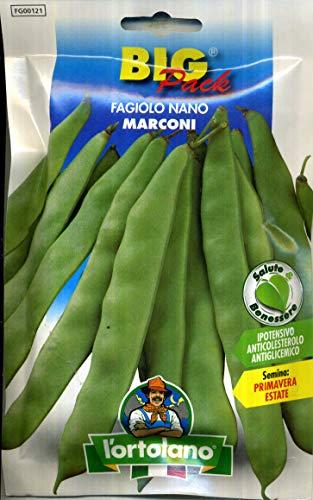 L'ortolano sementi di legumi (piselli, fagioli ecc.) di qualità in confezioni varie (Fagiolo nano Marconi, 50 grammi)