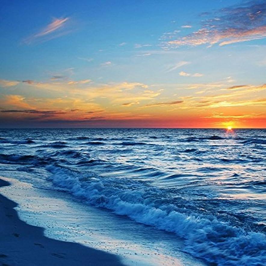 ゆるくミケランジェロネットアロマフレグランスオイル シーブリーズ(Sea Breeze)