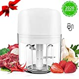 Mini Food Chopper,250ML Electric Portable Food Processor USB Charging Vegetable Blender Mixer with 3 Sharp Blades, Small Mini Grinder for Baby Food, Meat, Onions, Garlic, Fruits, Extra 1 Brush