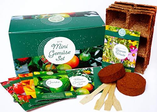 Bio Mini Gemüse Anzuchtset - 4 Sorten Bio Balkon Gemüse Samen. Perfektes Gemüseset für Topf, Fensterbank und Balkon. Geschenk für Kinder und Familie