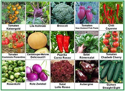 Gemüse Set 2: Broccoli Gurken Zwiebel Rosenkohl Kohlrabi Aubergine Salat Tomate Chili Paprika Melone Samen Saatgut
