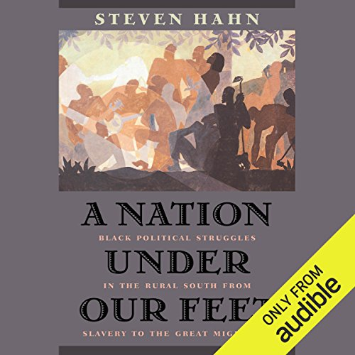 A Nation Under Our Feet audiobook cover art