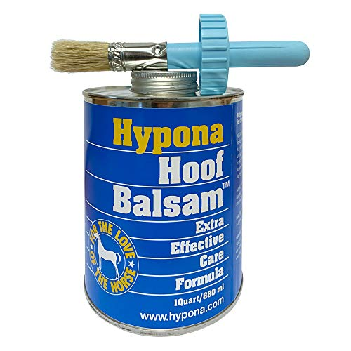 Hypona Huföl 880ml inklusive Pinsel