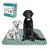 rocket & rex Washable Dog Pee Pads. Dog Training Pads, Waterproof, Reusable Dog Pee Pads. Leak-Proof, Absorbent Puppy Pee Pads. Whelping, Travel Pads, Dog Bowl Mat (Bone Print, (4-Pack) 30 x 36)