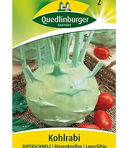 Quedlinburger Kohlrabi 'Superschmelz', 1 Tüte Samen