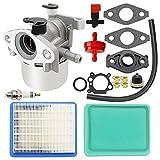 Sonline Carburador para Briggs Stratton 799866 790845 799871 796707 794304 Toro Craftsman Carb (Carburador con Kit de Filtro de Aire)