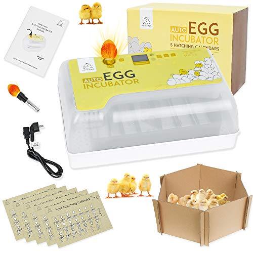 MINICHICK Incubadora digital totalmente automática de huevos gallina con volteo   diseñada en España. Control de temperatura y humedad. (RECTANGULAR)
