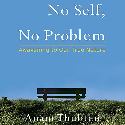 No Self, No Problem audiobook cover art