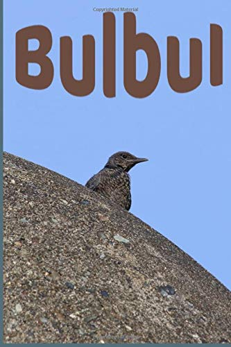 Bulbul:: Funny Lined Journal Notebook For Peoples Who Loves Bulbul