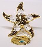 GERMANY CRYSTAL TEMPTATIONS - Estrella de mar con Cristales de Swarovski