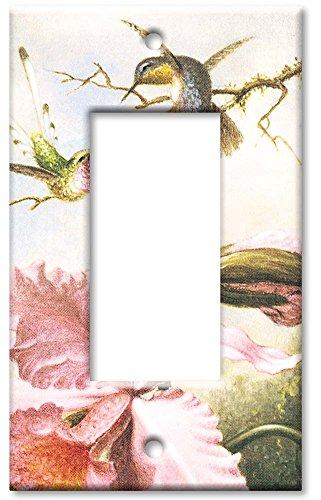 Single Gang Rocker Wall Plate - Heade: Orchids & Hummingbirds