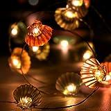 American Lighting String Lights