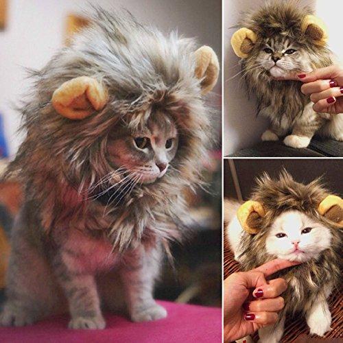 Bolange Löwenmähne Kostüm für Katze Hund Lustiges Weihnachten mit Halloween-Dekor-Mähnen-Hut Haustier Kleid Versorgung