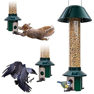 Squirrel Proof Wild Bird Feeder - Roamwild PestOff from Roamwild
