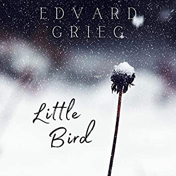 Lyric Pieces Book III, Op.43, No.4, Little Bird