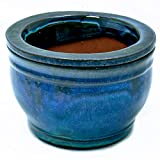 6in Round African Violet Self Watering Pot Falling Blue
