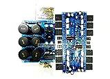 Q-BAIHE 50W 2 montado estéreo L10 amplificador +protección Fuente de alimentación de la placa DC +-50V
