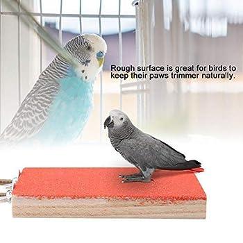 Oiseau Perche Stand en Bois Naturel Rough Plate-Forme Jouet Terrain De Jeux Patte De Meulage Propre Givré Conseil pour Pet Perroquet Hamster Écureuil(Red)