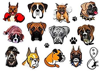 Boxer Dog Collection  Boxer Dog Temporary Tattoos