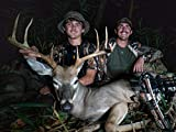 Kentucky - Ted's Public Land Buck!