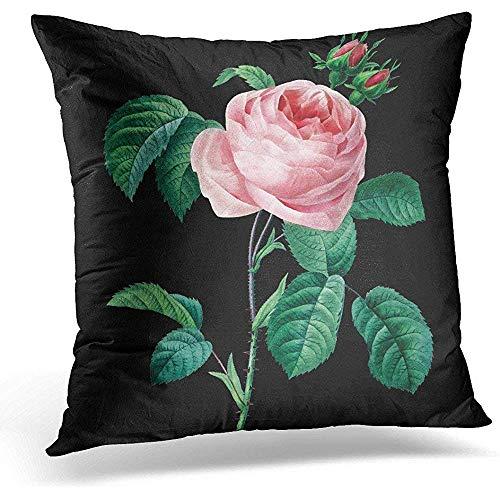 jonycm Pillowcase Rosas Rosa Rosa Negro Floral Redoute Estampado Encantador En Dos Lados Sofá De Regalo Decorativo Cojín Fundas De Almohada Funda De Almohada Cremallera Oculta Poliéster S