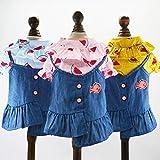 zNLIgHT Sommer-Hundekleidung, asymmetrischer Rock, Schaukelkleid, Prinzessinnen-Kostüm, Outfit, Blau, XS