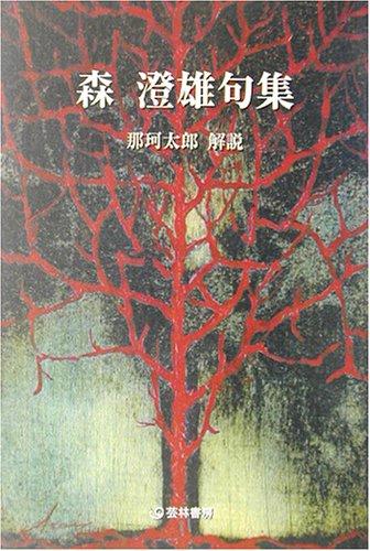 森澄雄句集 (芸林21世紀文庫)の詳細を見る