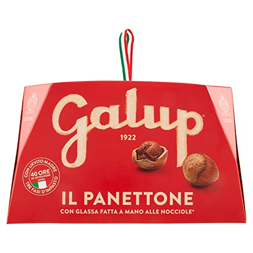 Galup NV03 Panettone Classico, 1000 Gr
