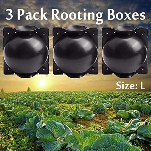 QSs-Ⓡ 3-teilige Hochdruck-Ausbreitungskugel, Pflanzenwurzelbox Pflanzenwurzelbox-Propagator-Pfropfkugel, Pflanzenwurzelvorrichtung, für Verschiedene Pflanzen