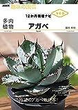 多肉植物 アガベ NHK趣味の園芸 12か月栽培ナビNEO