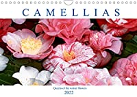 Camellias (Wall Calendar 2022 DIN A4 Landscape): Queens of the winter flowers (Monthly calendar, 14 pages )