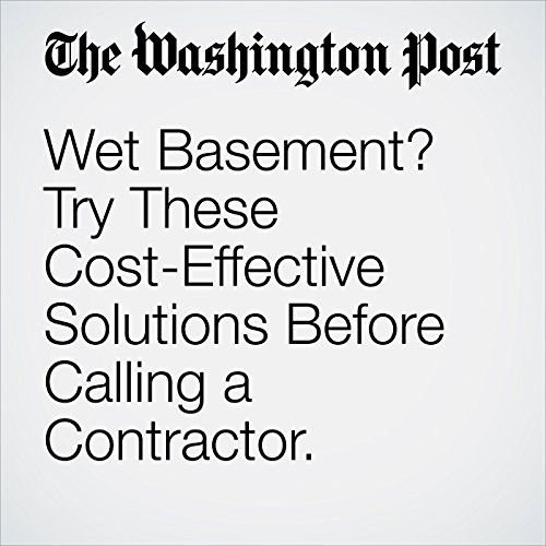 Wet Basement? Try These Cost-Effective Solutions Before Calling a Contractor. copertina
