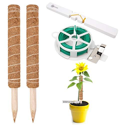 LOVEXIU PflanzenstüTzen 2 Stück Pflanzstab Kokos Monstera Pflanze Kokosstab für Pflanzen Rankstab Rankhilfe Blumenstab für Haus Garten Kletterpflanze Erweiterung Der PflanzenstüTze