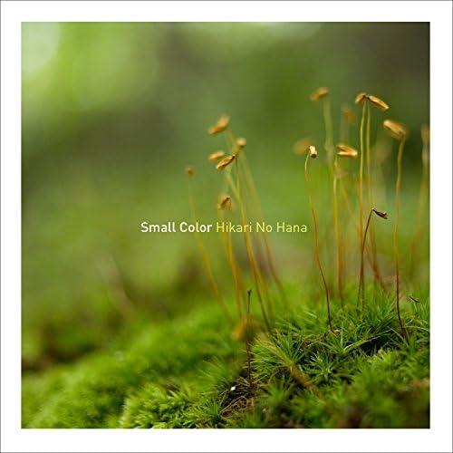 Small Color