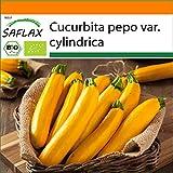 SAFLAX - BIO - Zucchina - Gold Rush - 5 semi - Cucurbita pepo var. cylindrica