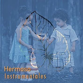 2019 Hermoso Instrumentales
