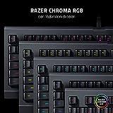 Zoom IMG-1 razer cynosa lite tastiera da