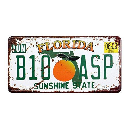 shinewe Florida B10ASP Nummernschild Vintage Metall Schild Crafts der Garage Art 15x 30cm