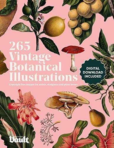 Vintage Botanical Illustration Copyright Free Images for Artists Designers and Plant Lovers product image