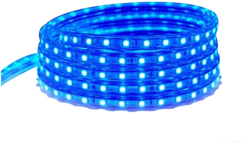 JJSP Lichtleiste, LED-Lichtleiste Kit wasserdichte LED-Streifenbeleuchtung einreihig warmes Licht für zu Hause, Küchenbeleuchtung, Weihnachtsschmuck (Größe   10 m)