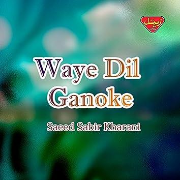 Waye Dil Ganoke