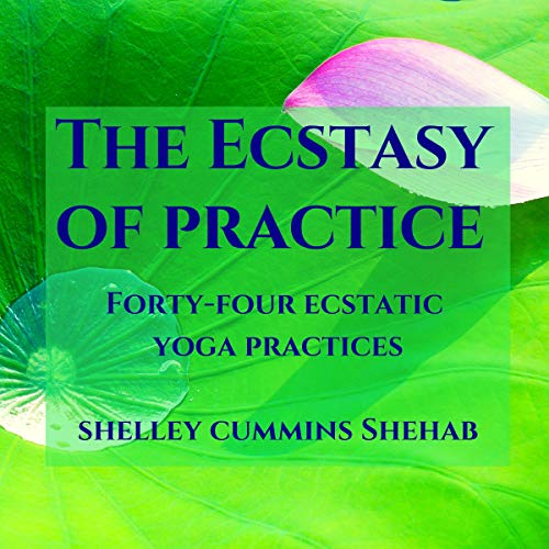The Ecstasy of Practice audiobook cover art