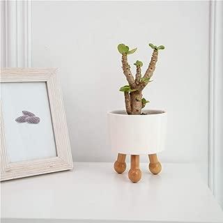 Allegro Huyer Ceramic Planter Ceramic Flower pots Planter Succulent Planter Pot Garden pots Planter Plant Flower Pot Nordic Decoration Home Ceramic Planter
