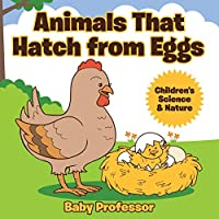 Animals That Hatch from Eggs - Children's Science & Nature