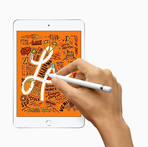 2019 Apple iPad Mini (7,9, Wi-Fi + Cellular, 256 GB) - Silber (5. Generation)