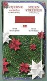500 Fröbelstern-Streifen mit Faltanleitung 10 mm rot